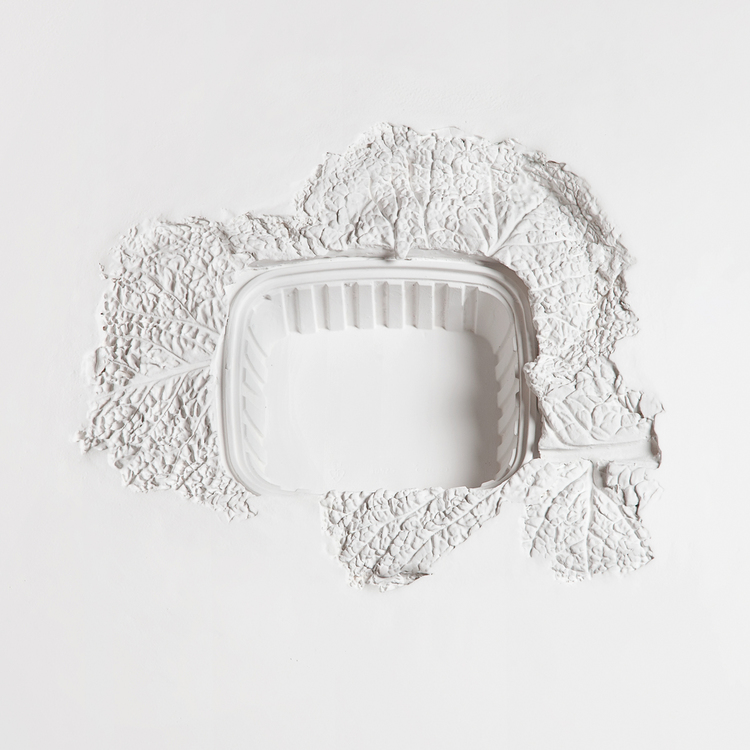 Projectile 3: Cabbage and Tupperware 2013 Plaster 24 x 24 inches
