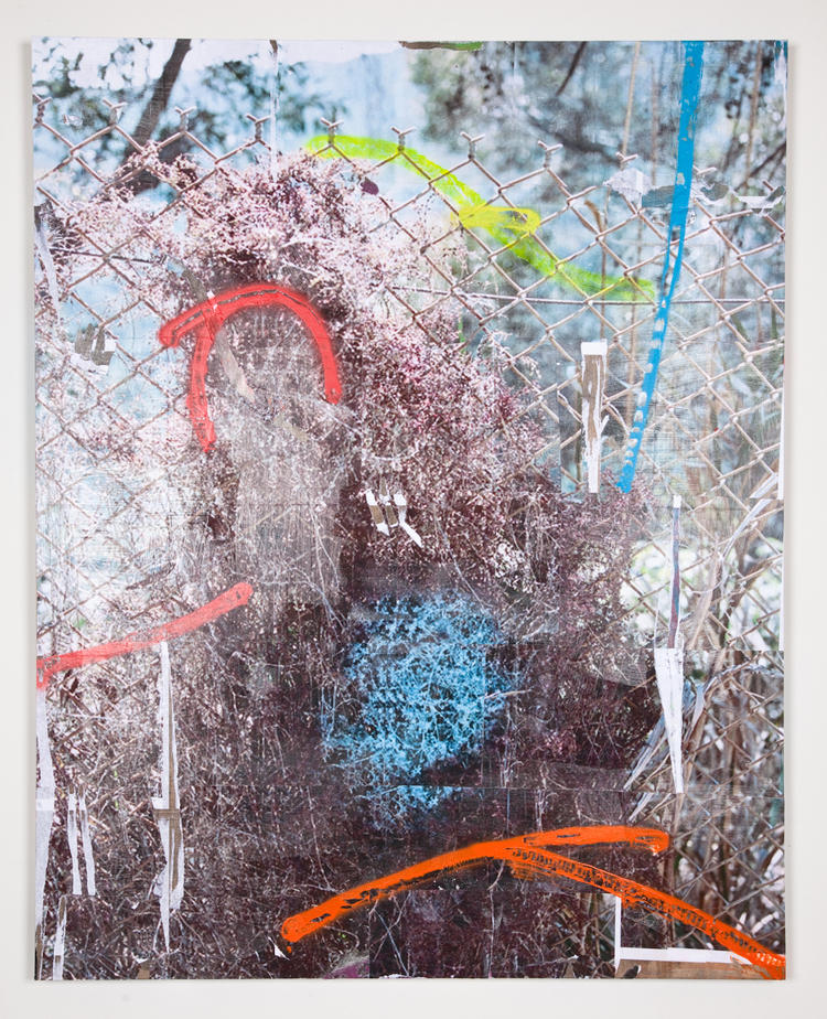 Jack Greer  Spray Bush 2  2012 Inkjet prints, gel medium, enamel and acrylic paint on wood panel  60 x 48 inches