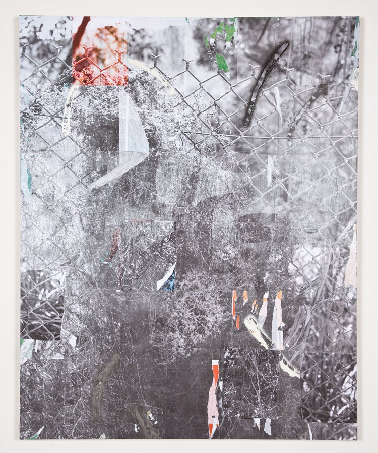 Jack Greer Spray Bush 7 2012 Inkjet prints, gel medium, enamel and acrylic paint on wood panel 60 x 48 inches