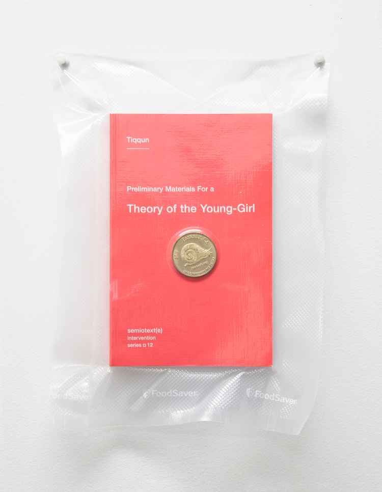 Brad Troemel  TSA No Fly List Vacuum Sealed Tiqqun, 'Theory of a Young Girl' with Fairfax, California time/labor barter coin, 2013 10 x 8 inches