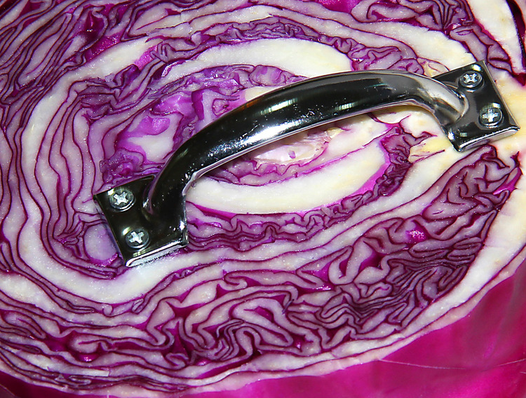 Purple Cabbage with Handle (supportive of a wide array of opinions) Unique 1/1  2012 Purple cabbage with handle