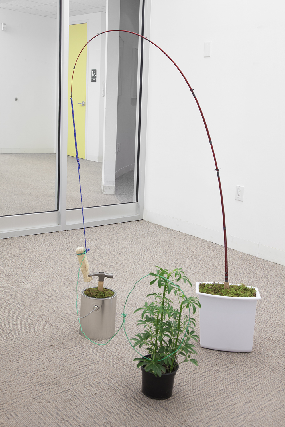 NICK DARMSTAEDTER   Vicki Vallencourt  , 2013   Fishing rod, hammer, plant, rope, wire and moss in buckets   33 x 55 x 24 inches