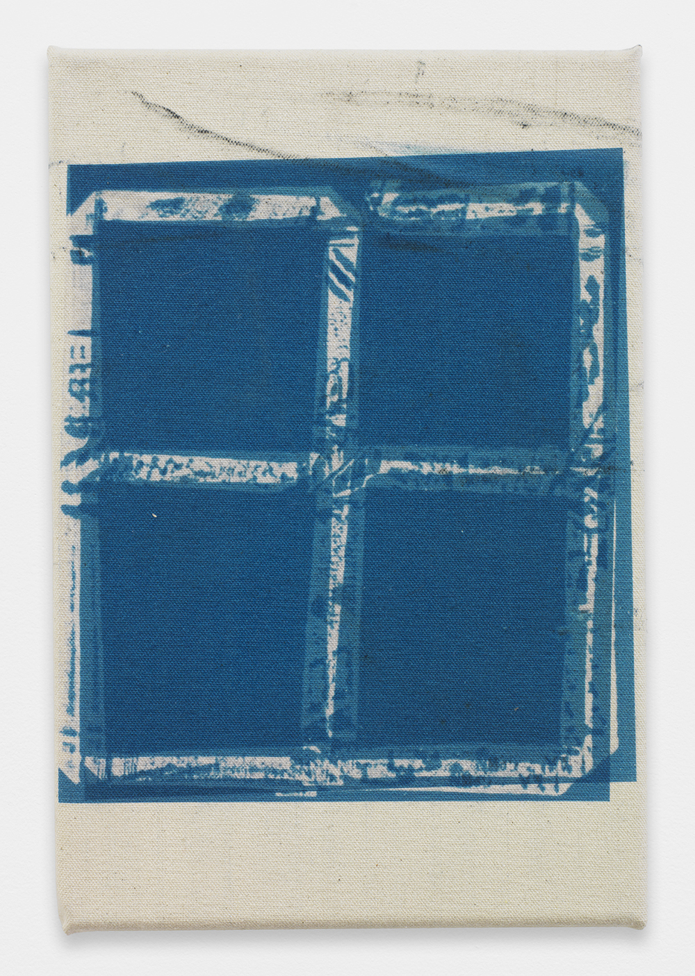 AUGUSTUS THOMPSON  Untitled  , 2013   Inkjet on raw canvas   12 x 8 inches
