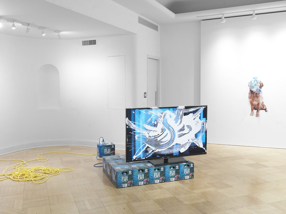 1, 2, 3, 9, 11 2014 Flat screen TV, Fiji water, paint, fake flower, artist made extension cord, and video Dimensions variable