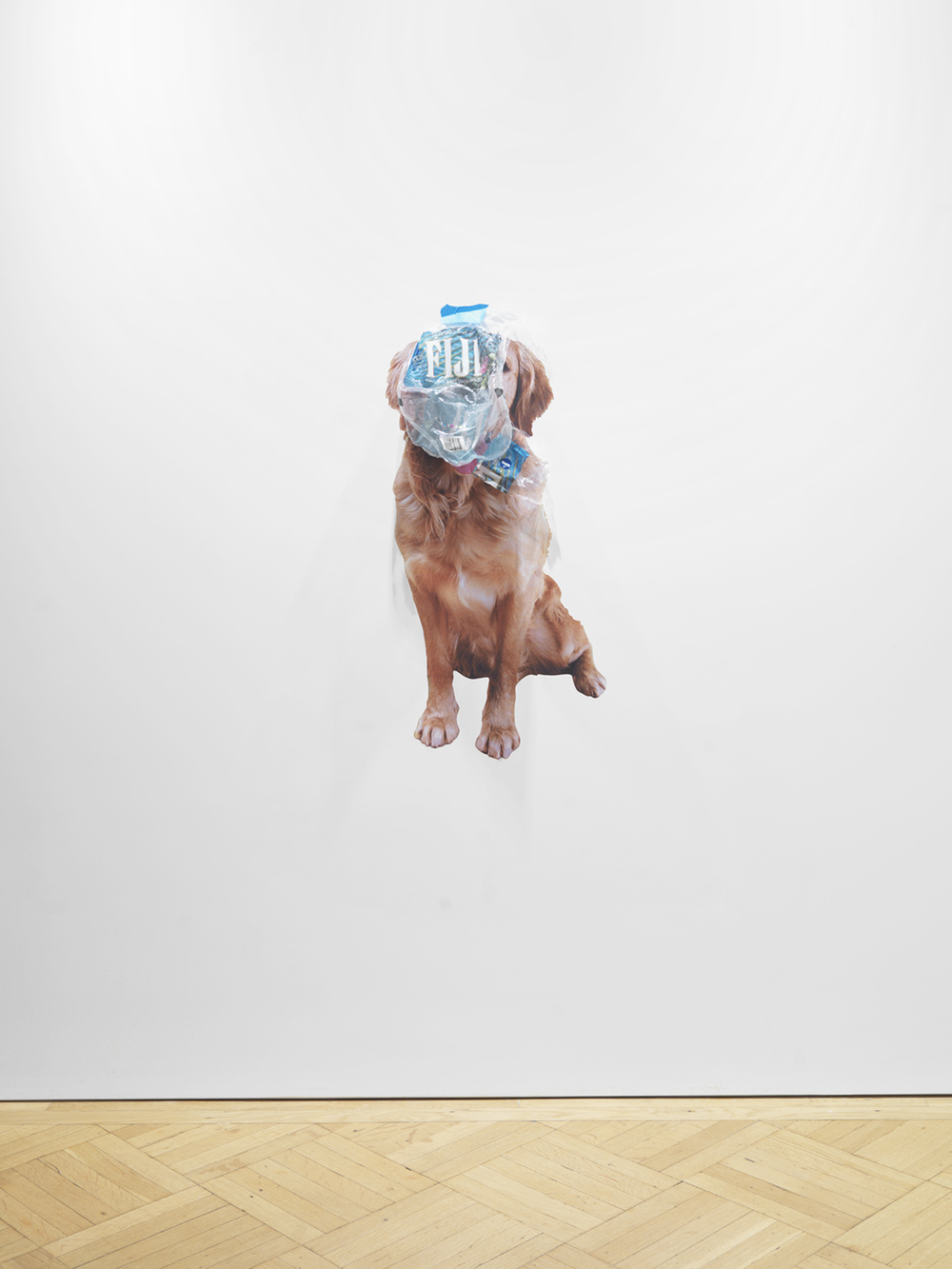4, 11  2014 Dog sticker, painter's tape, and plastic Dimensions variable