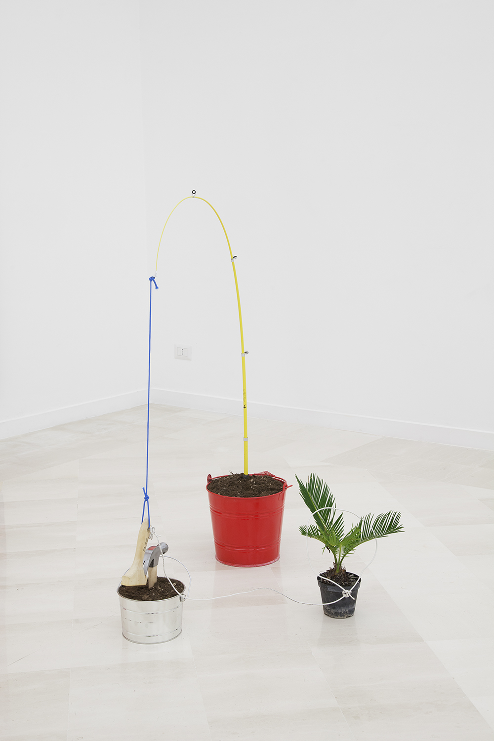 NICK DARMSTAEDTER  Babe Bennett, 2014  Fishing pole, buckets, plant, hammer, wood, dirt and cord  33 x 55 x 24 inches