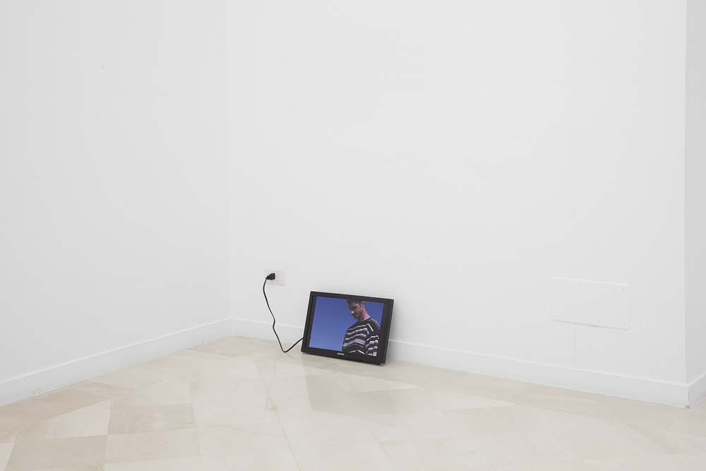 ALEX PERWEILER / ZACHARY SUSSKIND  Dopo il Pranzo, 2014  Screensaver on TV  18 x 12 inches