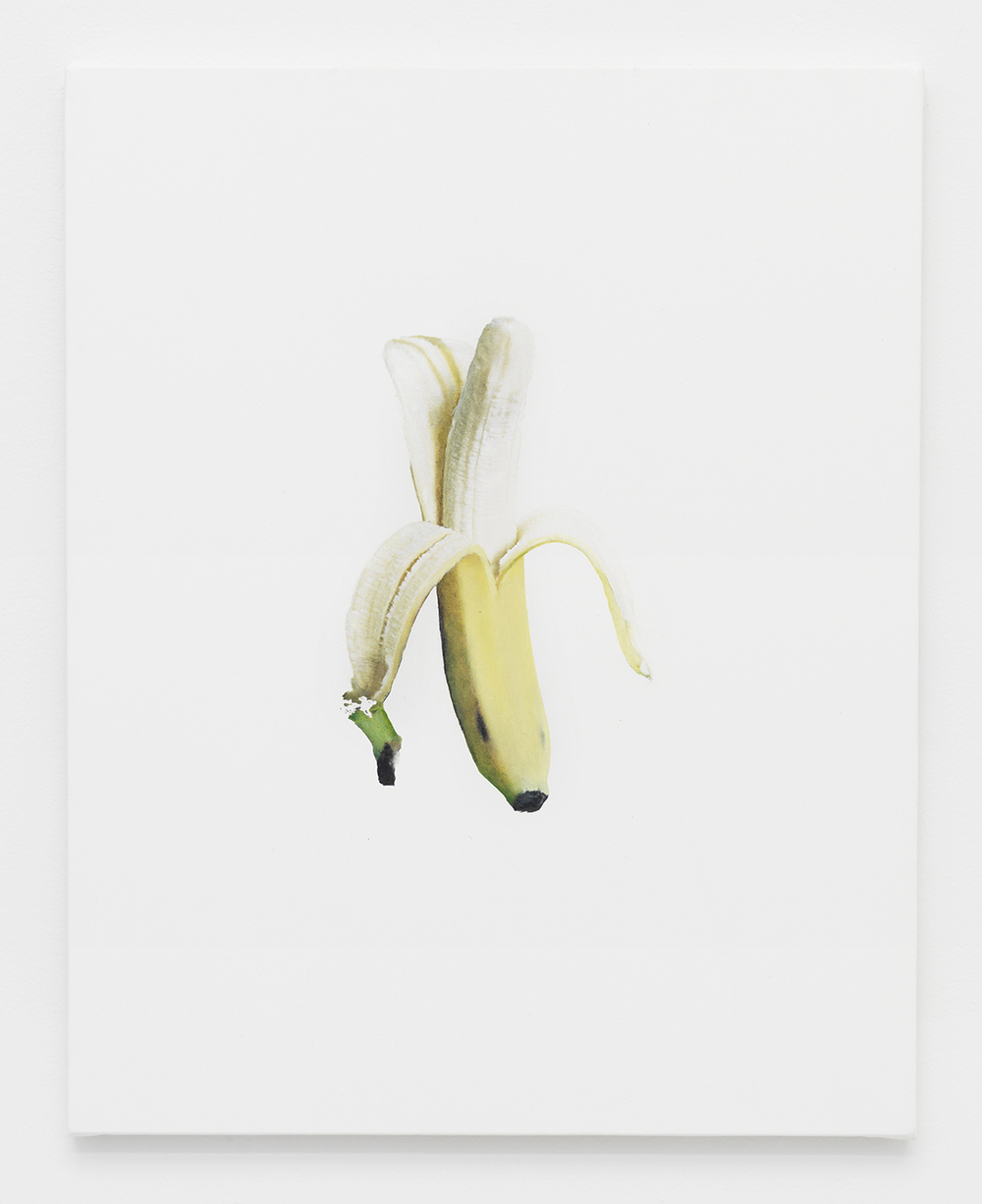 Banana Jpeg 1  2014  Oil and Epson Ultrachrome inkjet on Epson synthetic material  20 x 16 inches