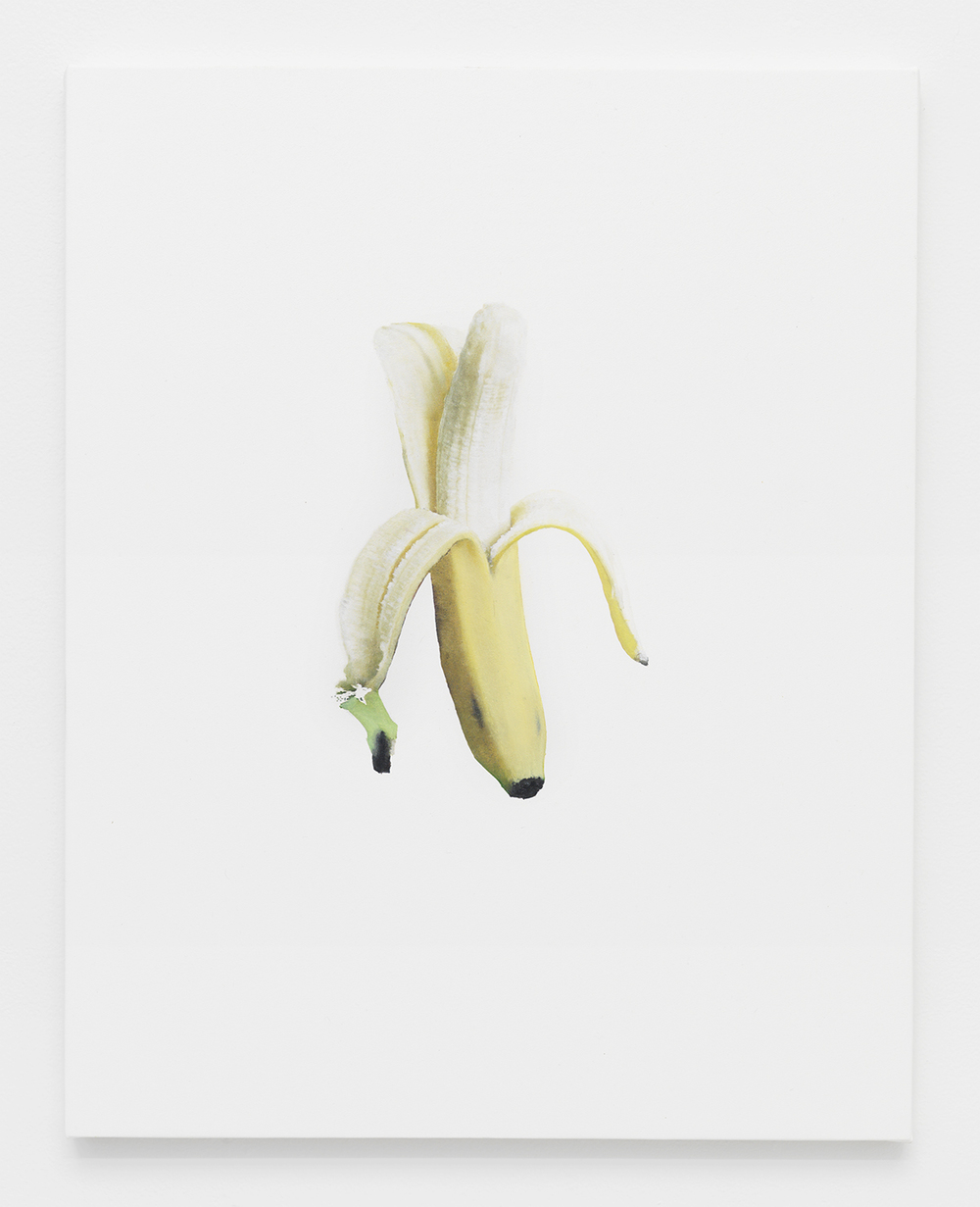 Banana Jpeg 2   2014    Oil and Epson Ultrachrome inkjet on Epson synthetic material    20 x 16 inches