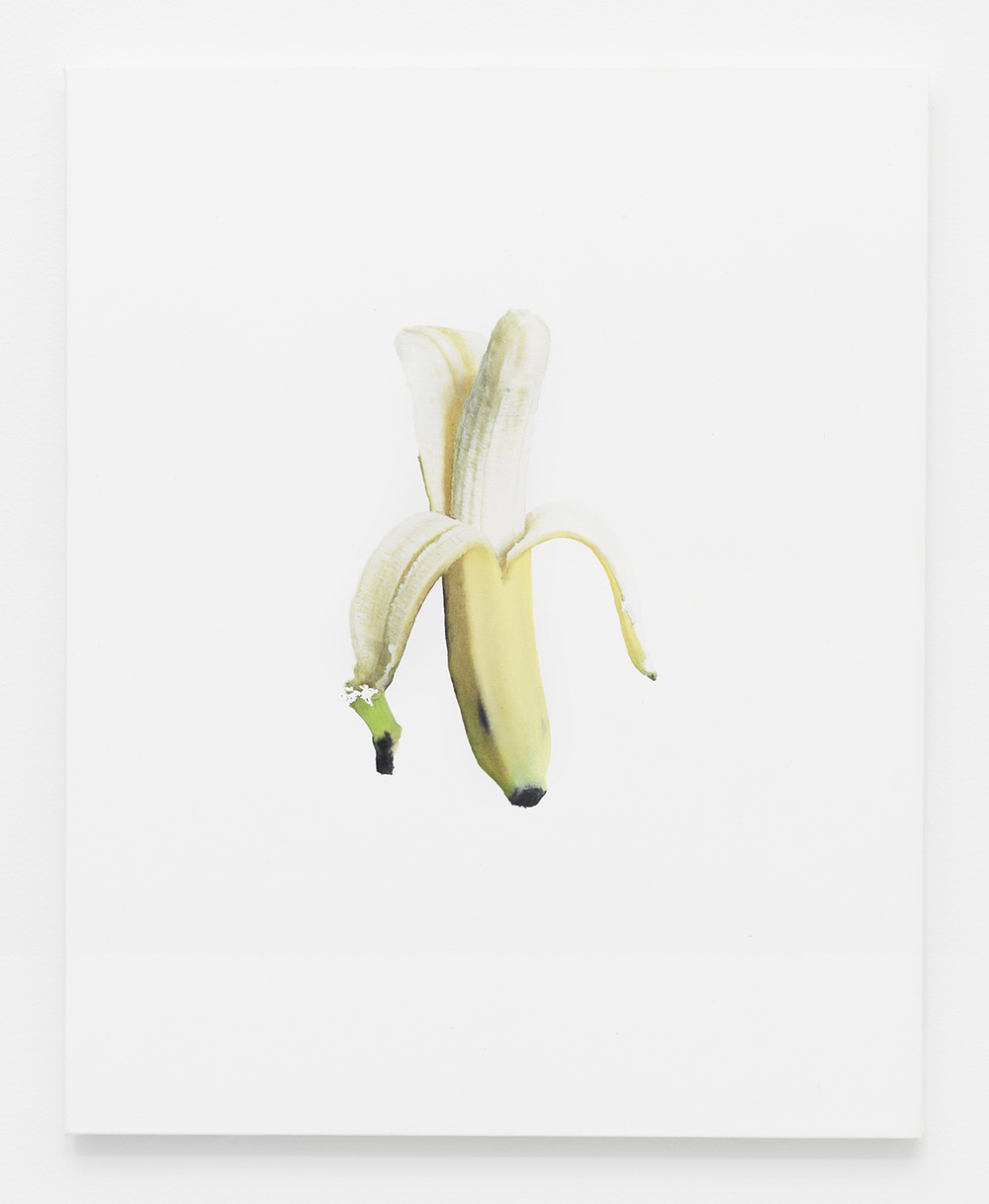 Banana Jpeg 3 2014  Oil and Epson Ultrachrome inkjet on Epson synthetic material  20 x 16 inches