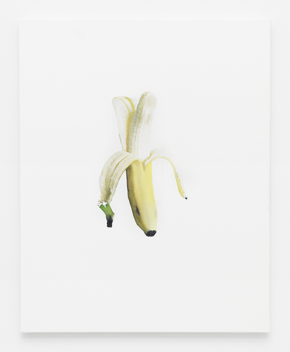 Banana Jpeg 4   2014    Oil and Epson Ultrachrome inkjet on Epson synthetic material    20 x 16 inches