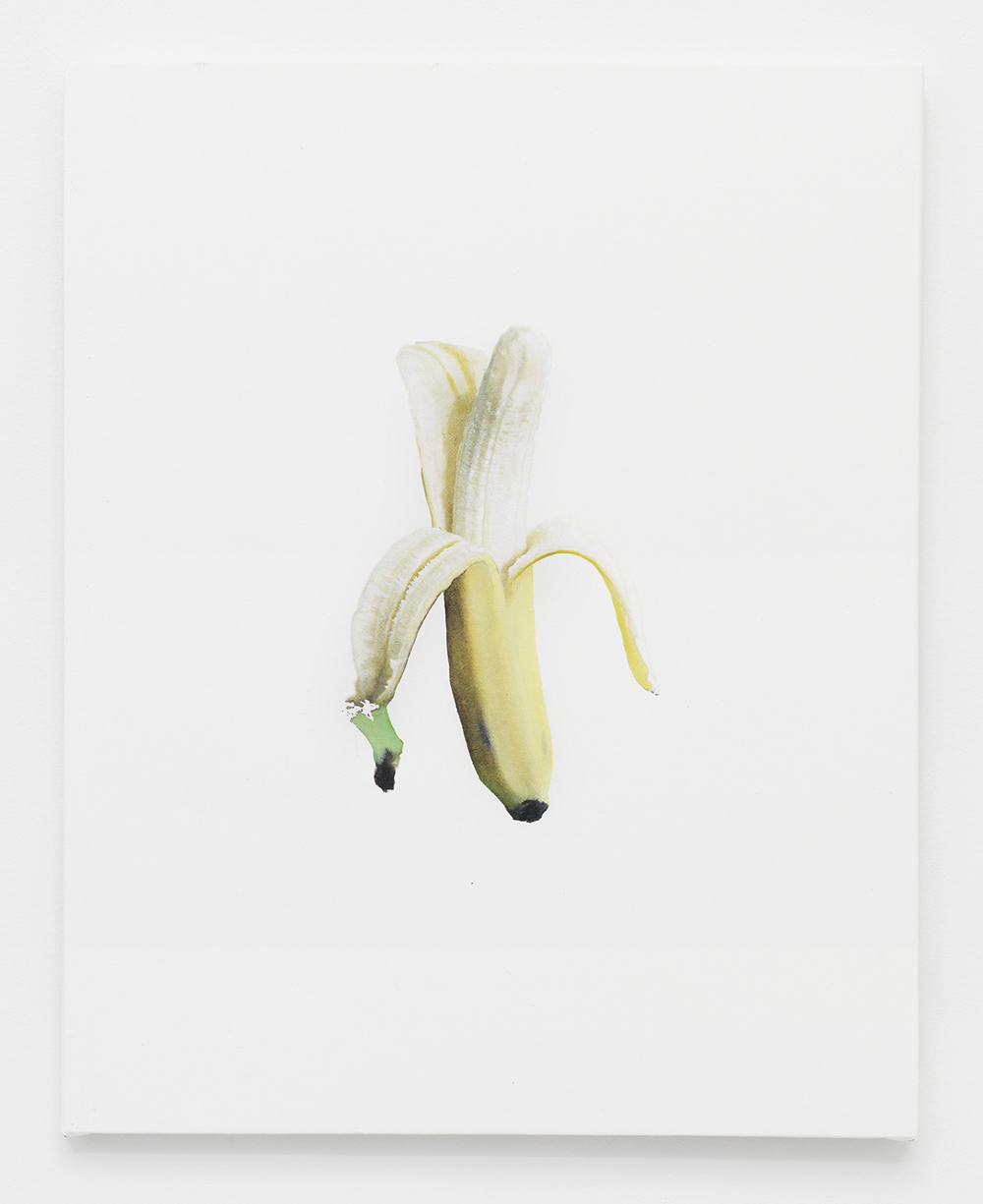 Banana Jpeg 5 2014  Oil and Epson Ultrachrome inkjet on Epson synthetic material  20 x 16 inches