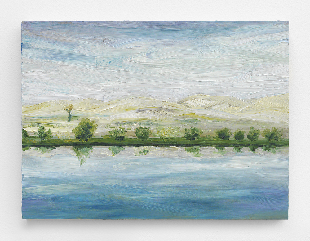 Mike Gigliotti  Landscape #3 , 2014 Oil on canvas 9 x 12 inches