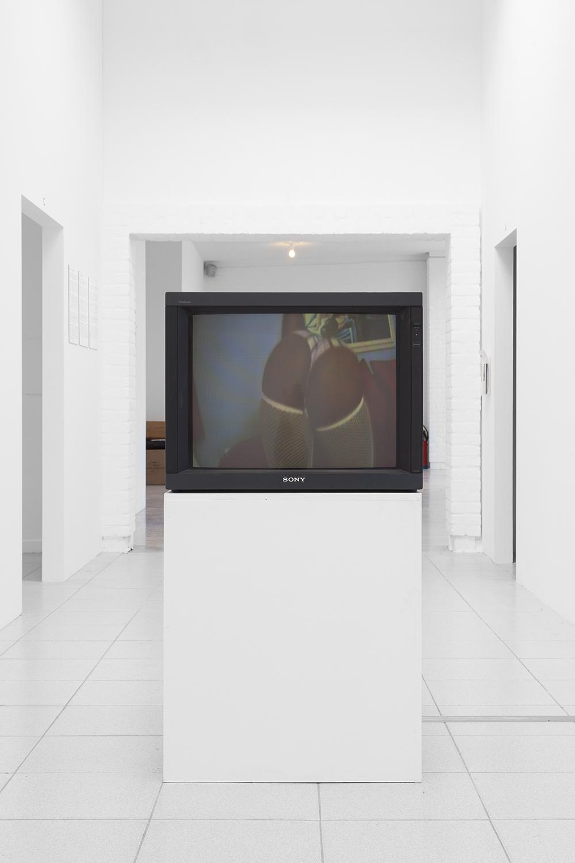 Phoebe Collings-James  Primates , 2011 Digital video Dimensions variable
