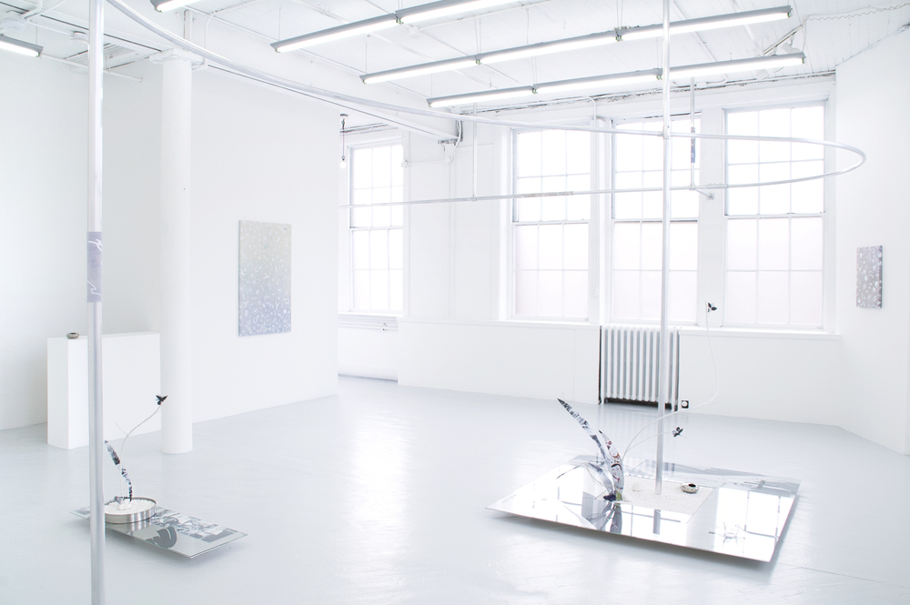 Installation view of  Jardin N°19  with Erika Ceruzzi at Springsteen Gallery, Baltimore
