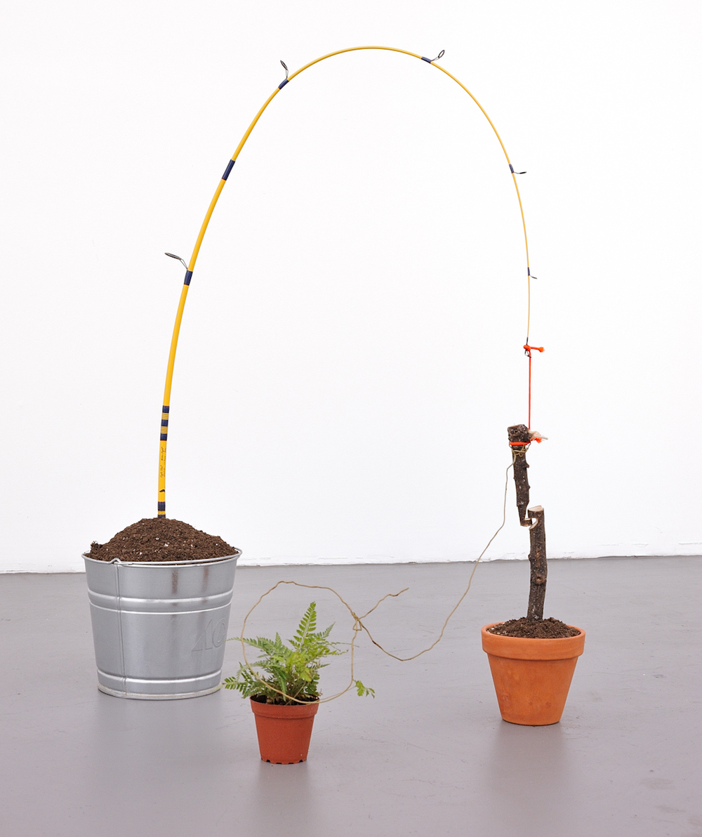 Snare Trap, 2011 Fishing pole, wood, plant, dirt, pots, chords Dimensions Variable