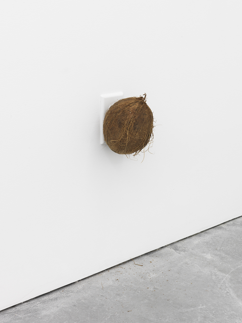 Dominic Samsworth  Thinking on our Backs , 2015 Coconut, air freshener and scent 6 x 4 inches