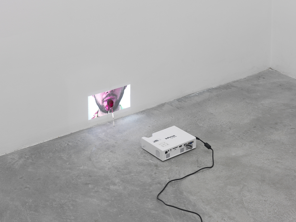 Mr. Owl, 2015 Digital video projector, thumb drive and Tootsie pop licked to the center by the artist Dimensions variable
