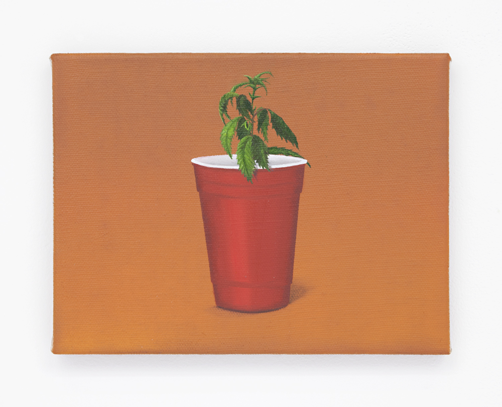 Solo sprout, 2016 Oil on linen 9 x 12 inches