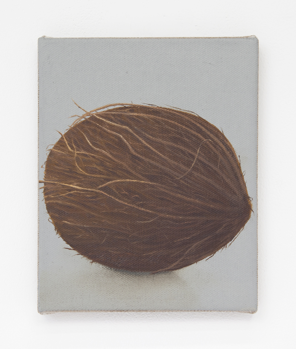 Coconut, 2015 Oil on linen 10 x 8 inches