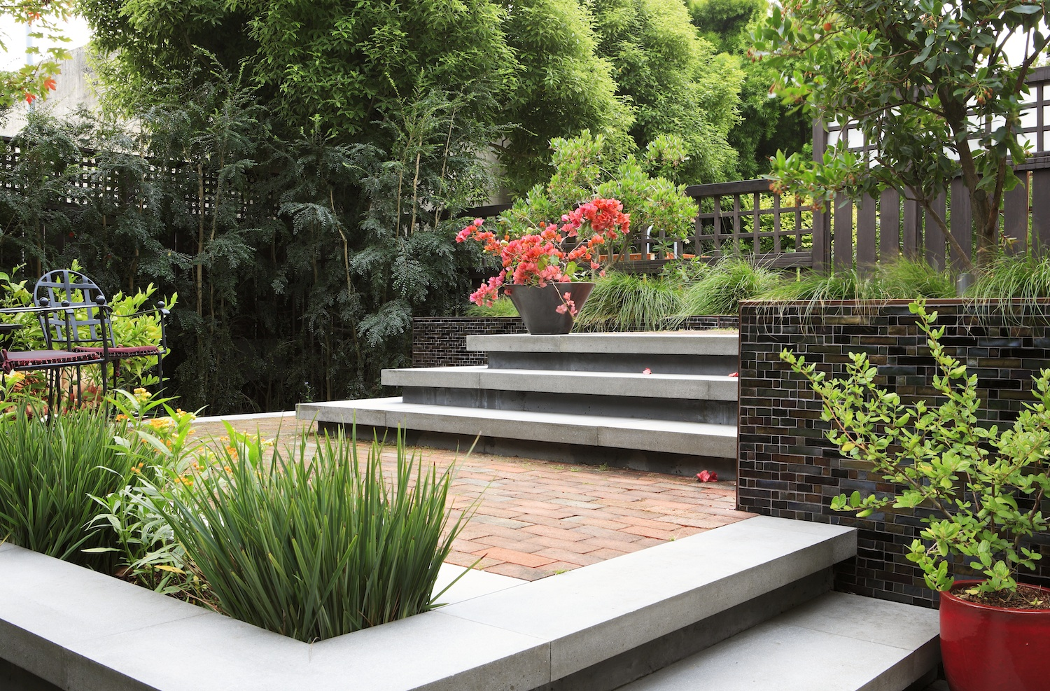 San francisco landscape architecture firms - The Emerging Garden By Arterra Landscape Architects Welcome San Francisco