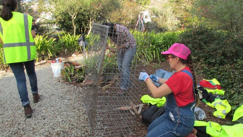lora martens gardener residency-07.JPG