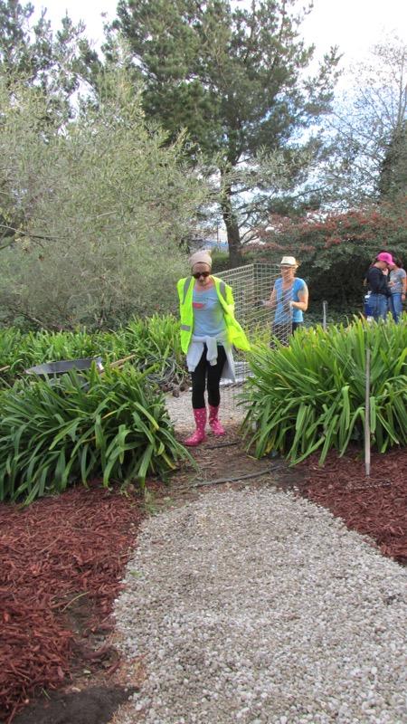 lora martens gardener residency-08.JPG
