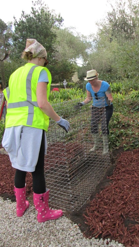 lora martens gardener residency-09.JPG