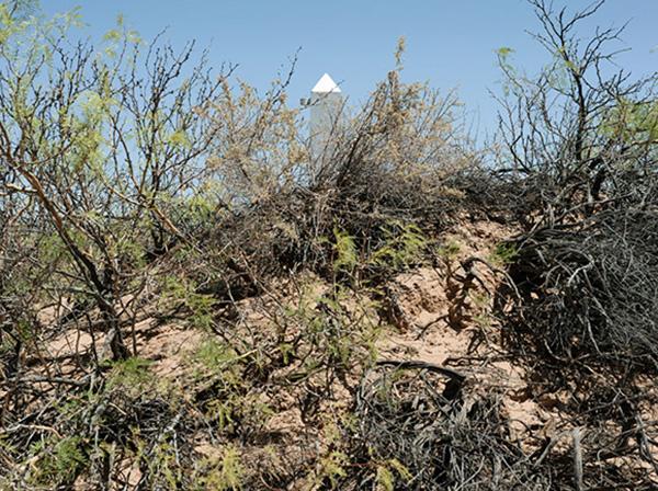 Border Monument No. 10 - N31º47.020' W107º04.733', 2008 | Photo courtesy of David Taylor