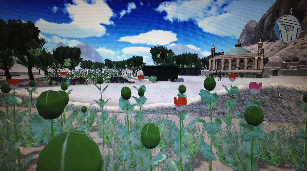 Geotypical mosque and poppy fields in DICE-T | Photo of screen by Hillary Mushkin