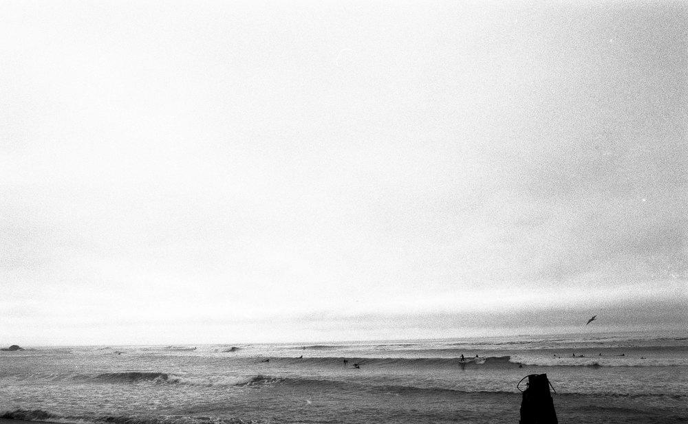 surffilm005.jpg