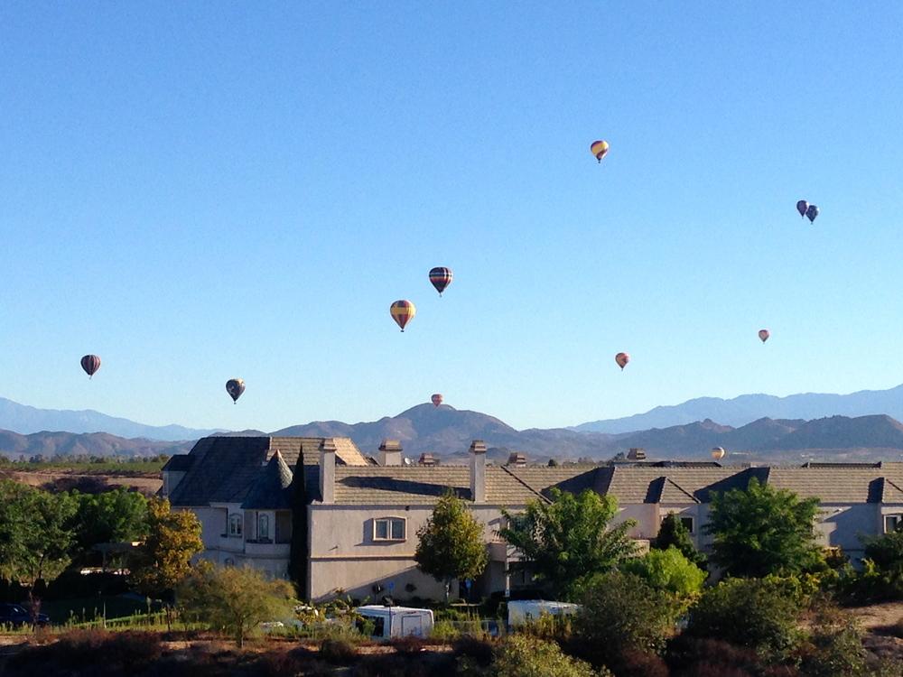 rear-lawn-balloons.jpg