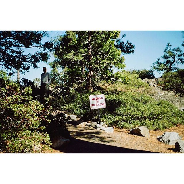 Lake Tahoe signs 3/3 #35mm #film #leica