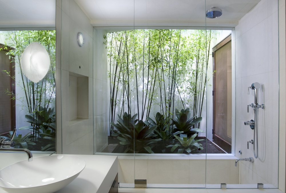 Showering In the Tropics