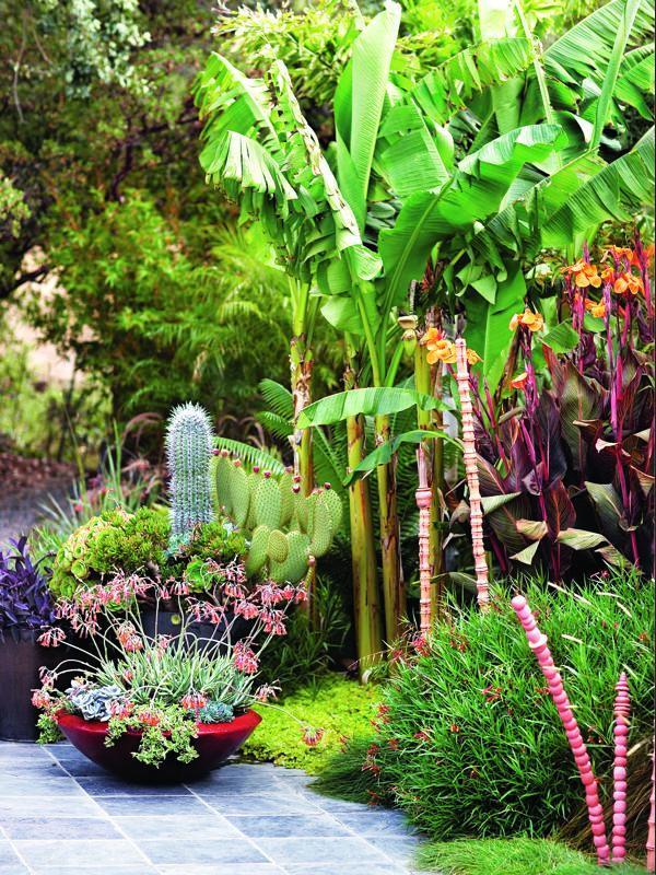 Garden Design California Dreaming: a Davis Dalbok garden