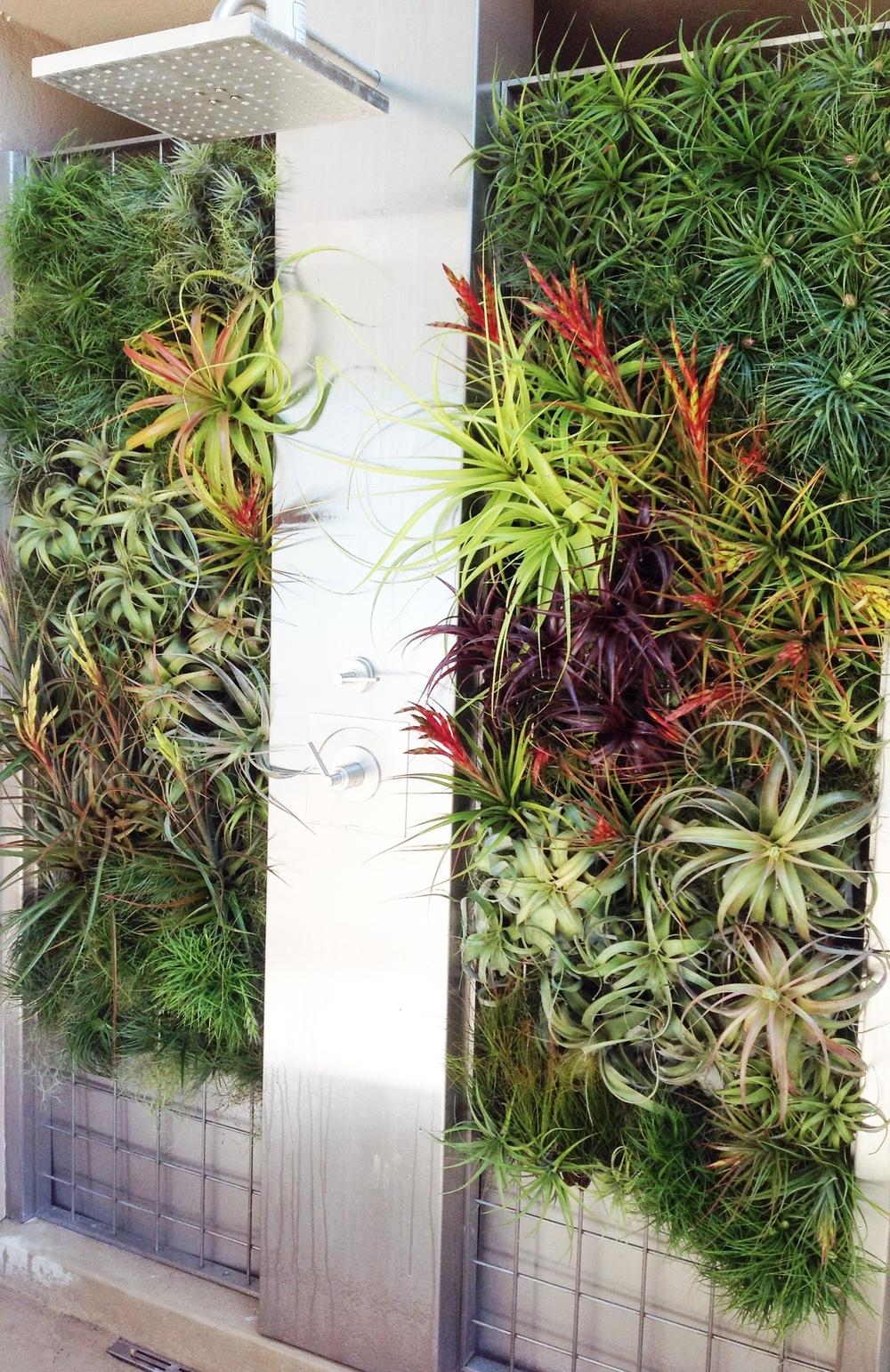 Outdoor Vertical Shower Garden