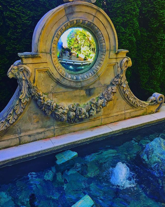 Secret San Francisco Garden🍃#livinggreendesign #watergarden #aquaticgarden #aquamarine #gardenantiques #pleasuregarden