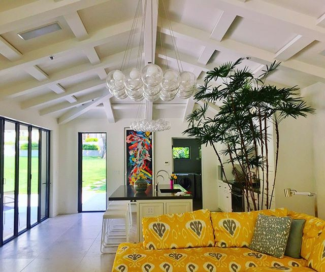 Pool House Plantscape of KentWoodlands client. #livinggreendesign #rhapis #indoorplants #indoorpalm #moderninterior #chinacane #atrium