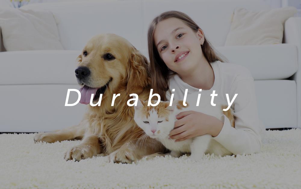 Durability overlay all.jpg