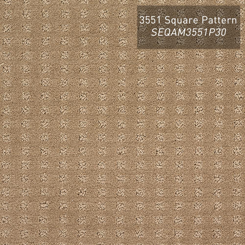 SEQAM3551P30-thumbnail.jpg