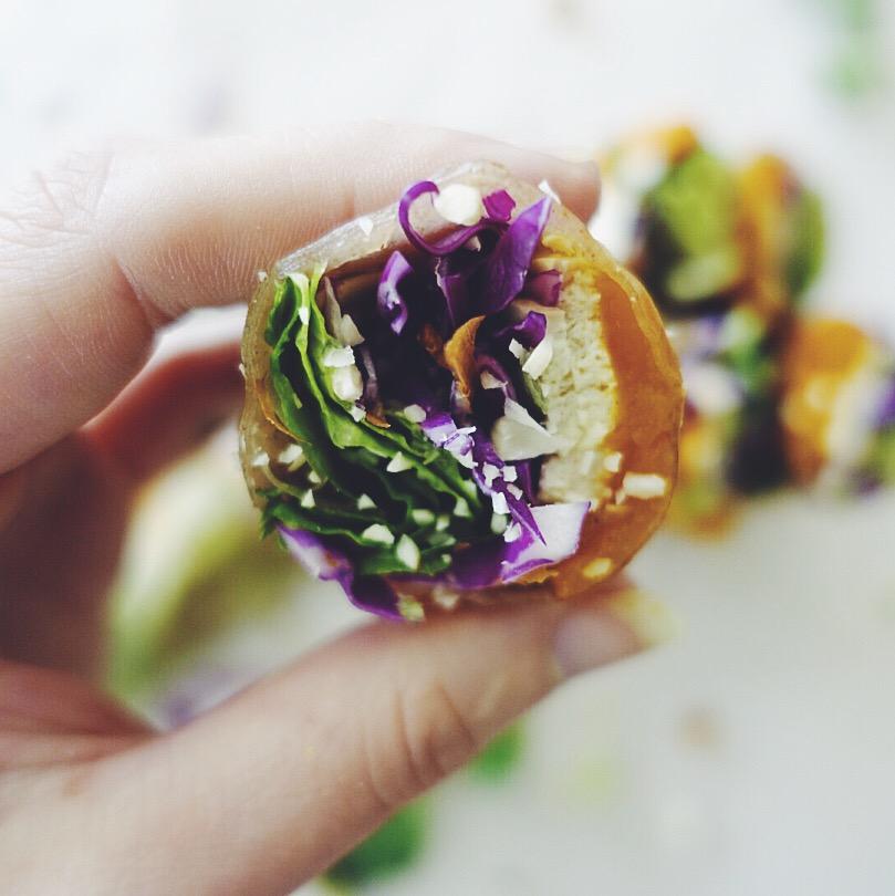summer rolls in hand