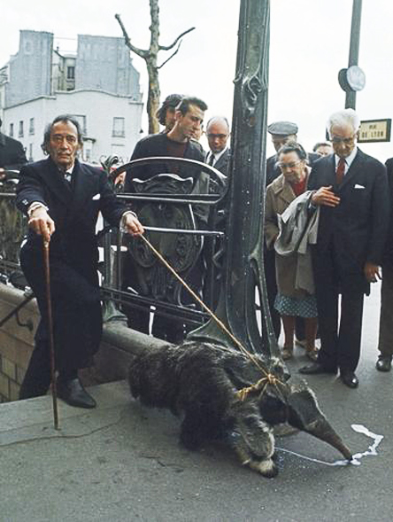 lovehaight :   Salvador Dali walking his anteater. I should really take my anteater on walks more often…( via )