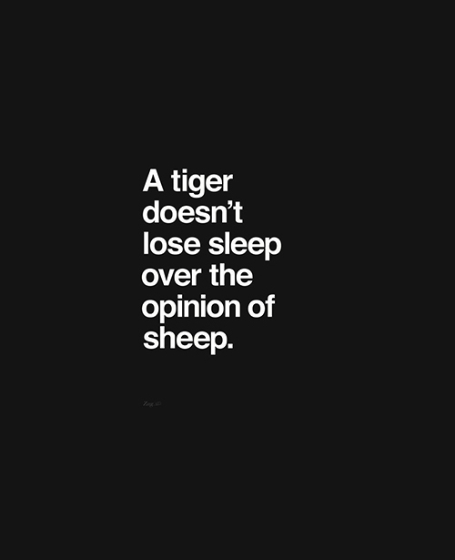 nevver: A tiger doesn't This is my favorite empowering quote.