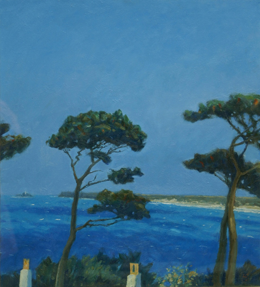 Pine Trees, St.Ives Bay