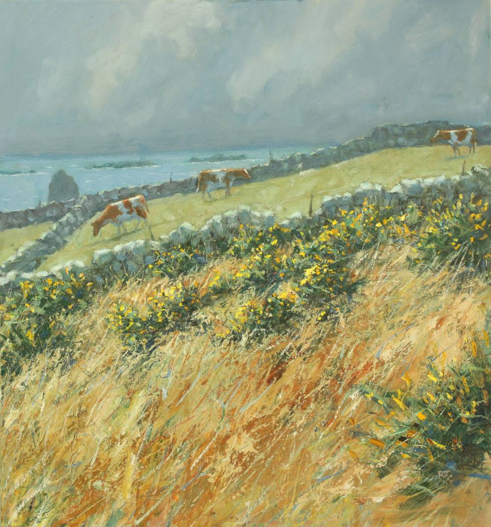18. Gorse, Sea and Cows troy town, st.agnes, isles of scilly II