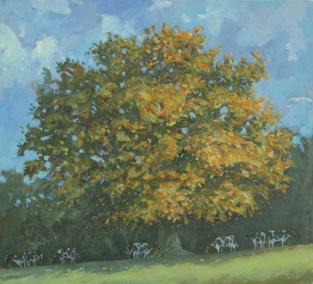 46. Autumn Oak