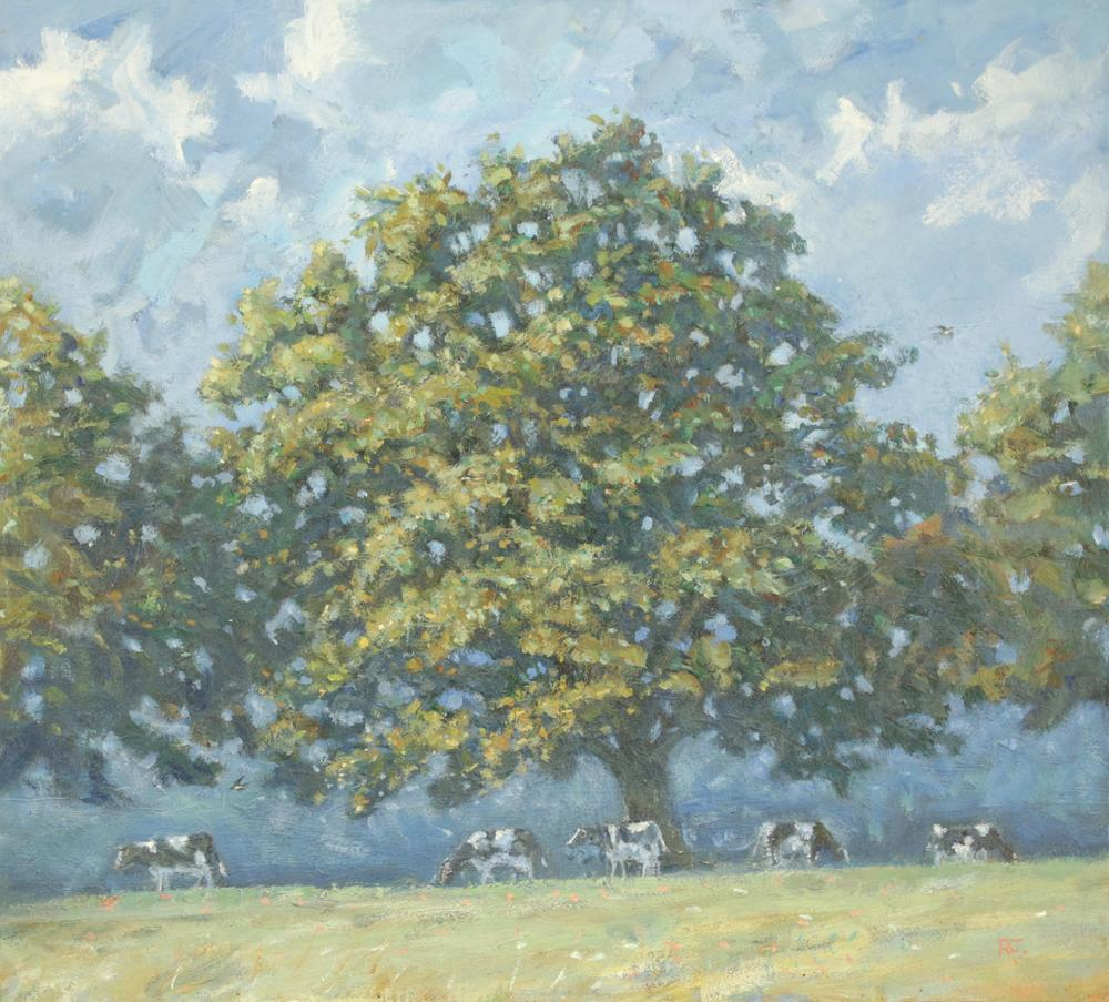 29. oak tree, cows