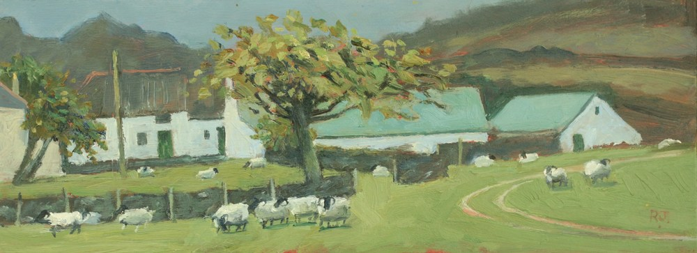 62. sheep farm and cherry tree, appin