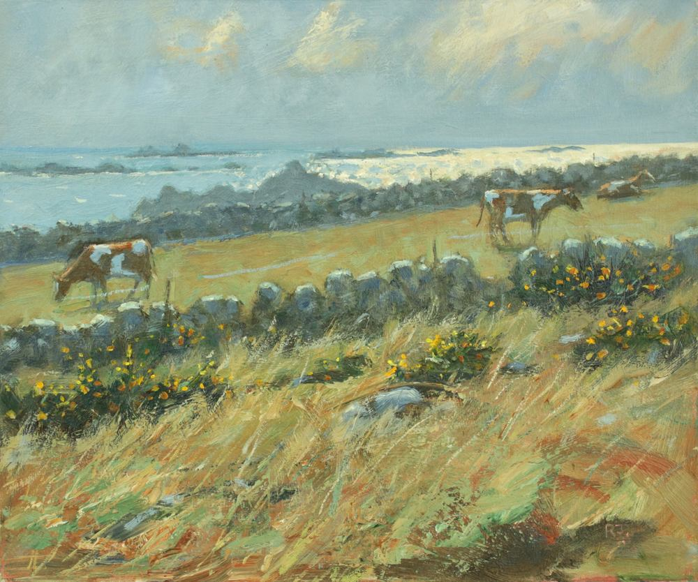 61. troy town farm, st. agnes, isles of scilly II