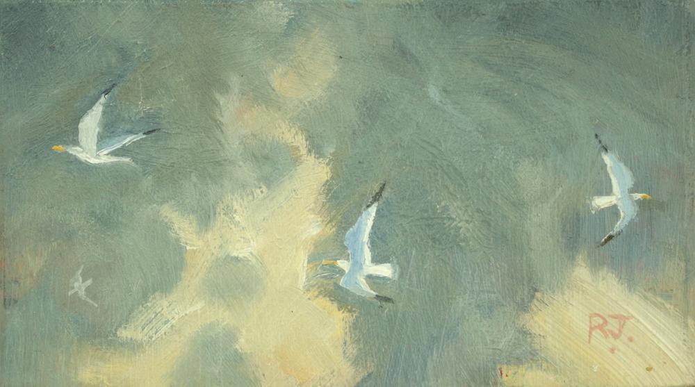 51. flight of gulls VI